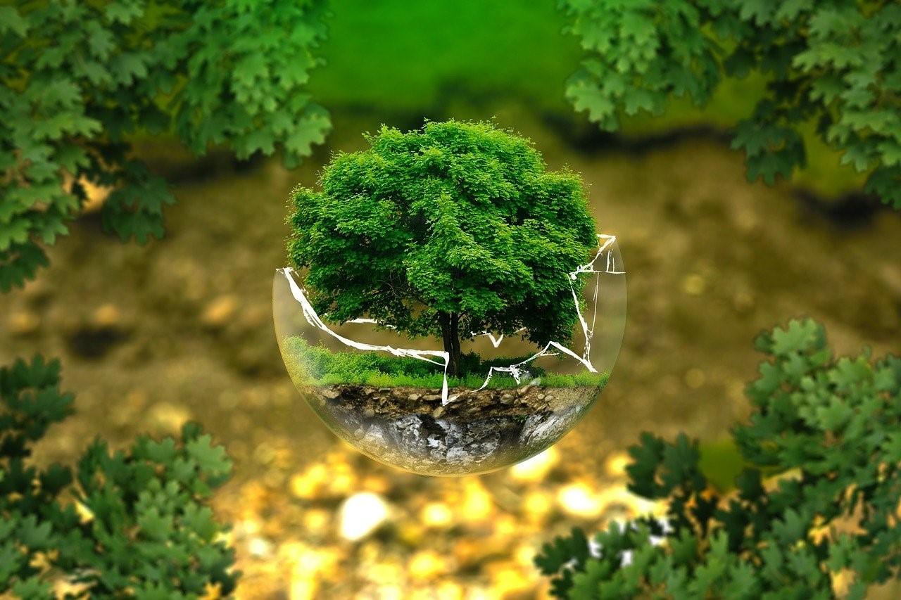 Covid-19 : pourquoi miser sur la relance verte?